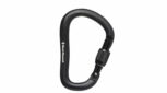Black Diamond RockLock Screwgate Alloy Carabiner